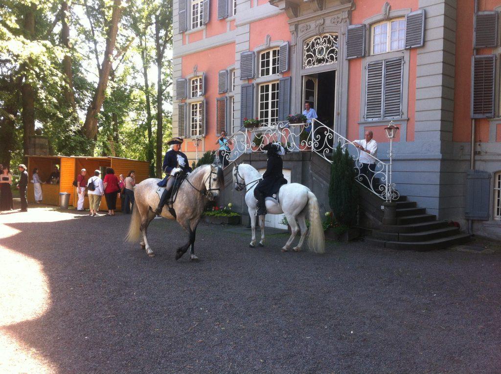HorseBusiness Bild 3